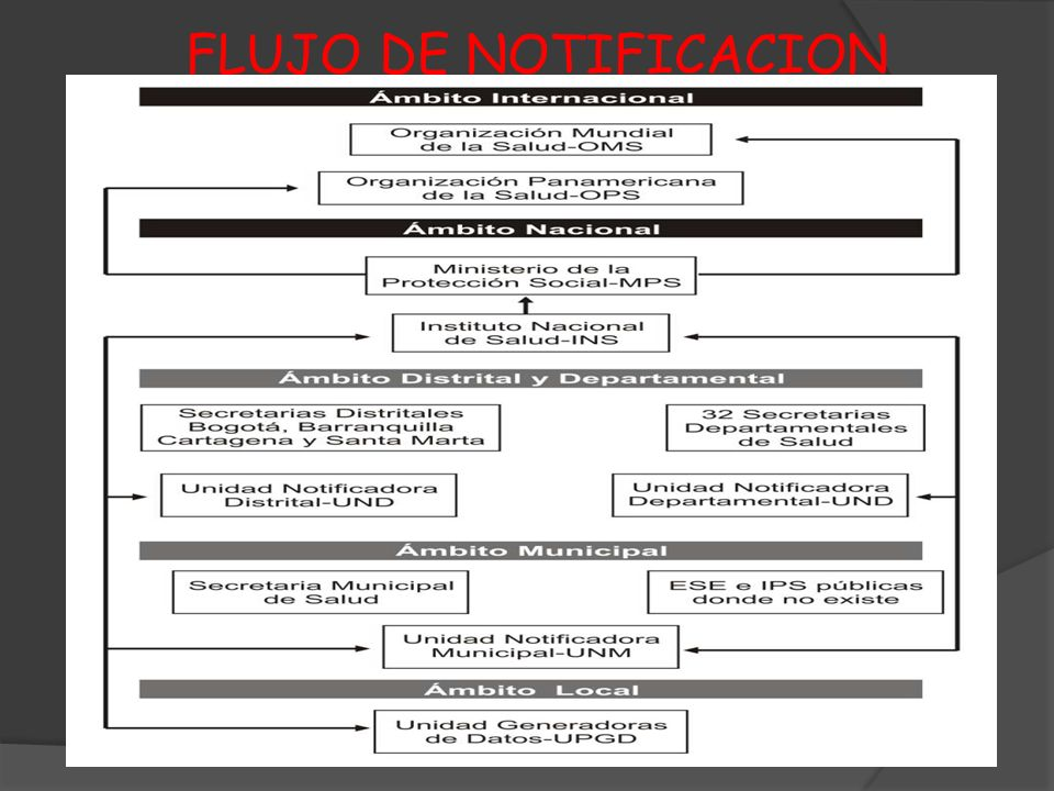 FLUJO DE NOTIFICACION