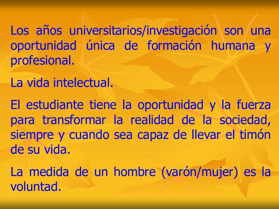 Los años universitarios/investigación son una oportunidad única de formación humana y profesional.