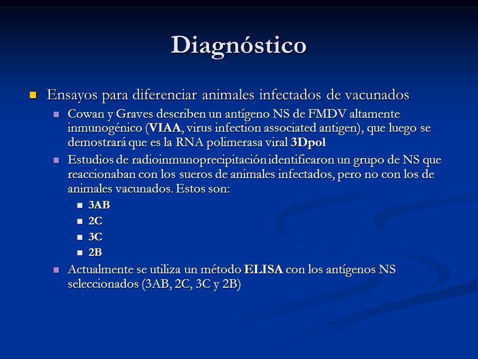Diagnóstico Ensayos para diferenciar animales infectados de vacunados