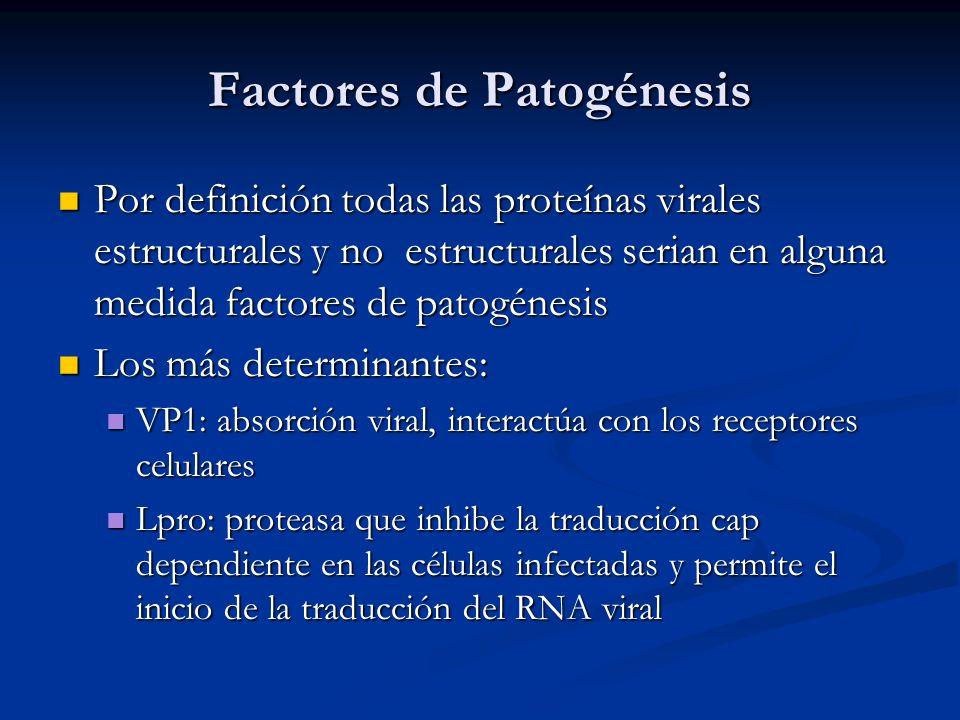 Factores de Patogénesis