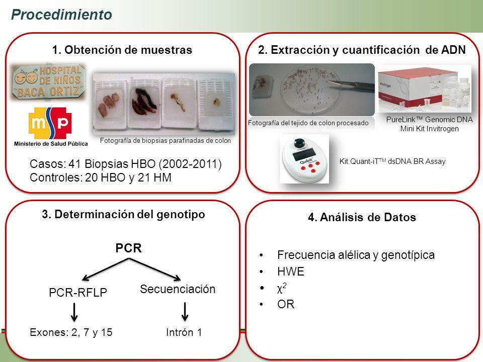 2. Extracción y cuantificación de ADN