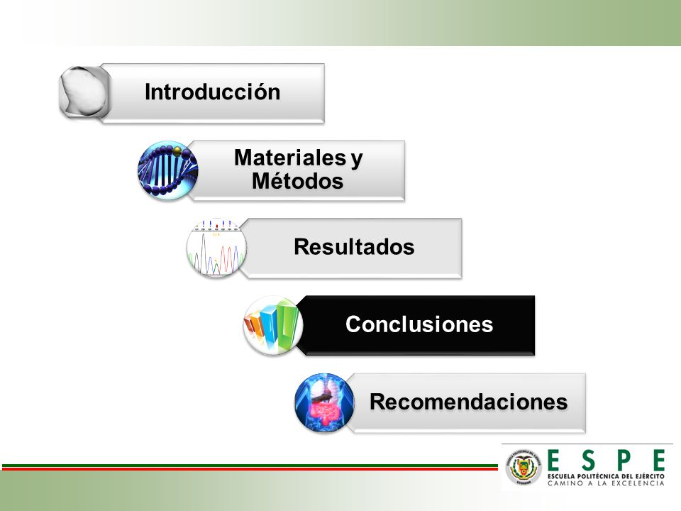 Introducción Materiales y Métodos Resultados Conclusiones Recomendaciones