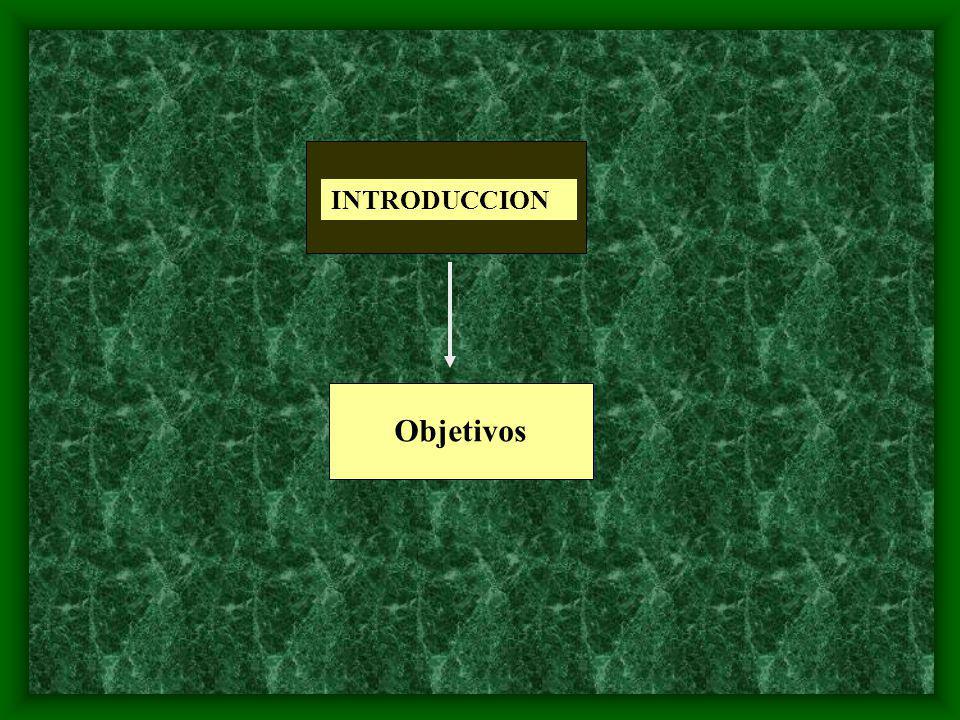 INTRODUCCION Objetivos