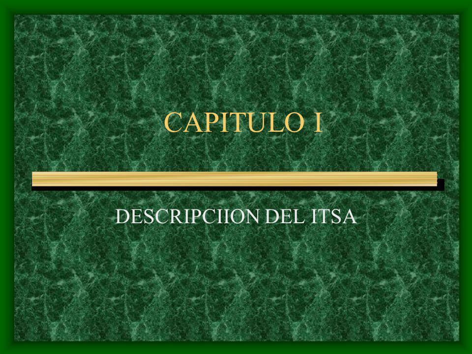 CAPITULO I DESCRIPCIION DEL ITSA