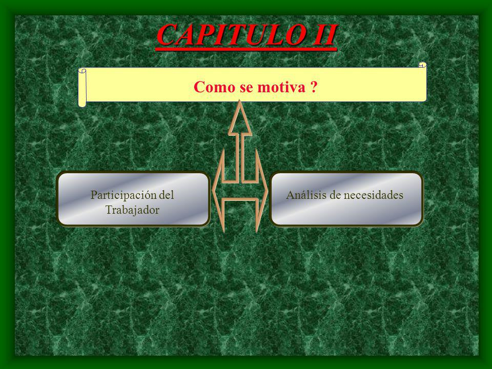 CAPITULO II Como se motiva Participación del Trabajador