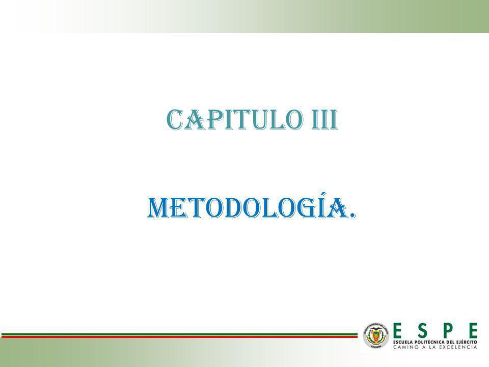 CAPITULO III CAPITULO III Metodología.