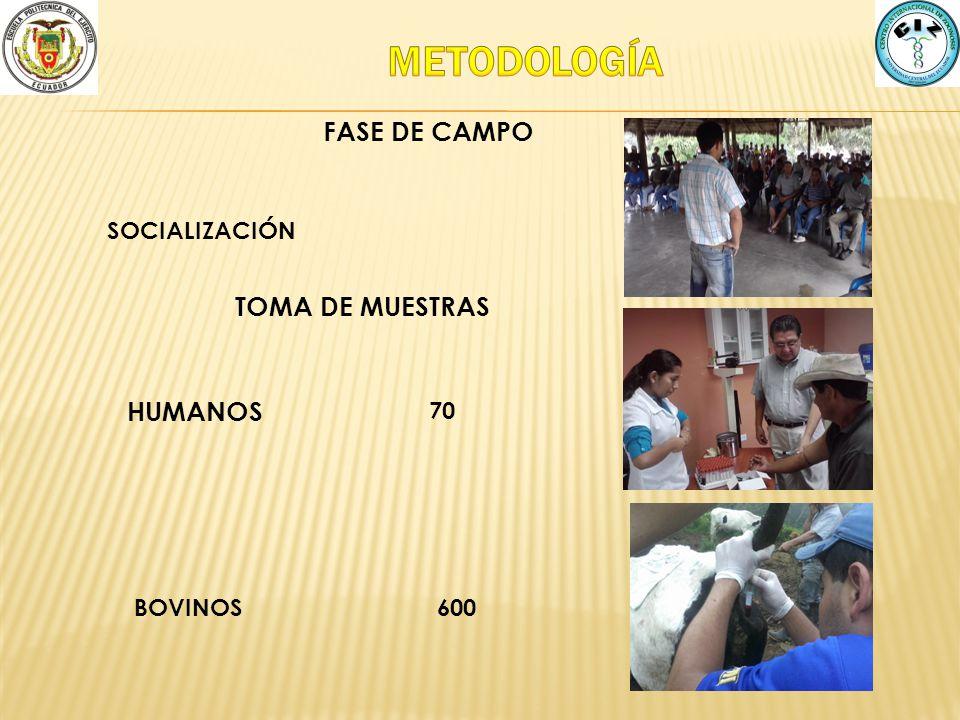 METODOLOGÍA FASE DE CAMPO TOMA DE MUESTRAS HUMANOS SOCIALIZACIÓN 70