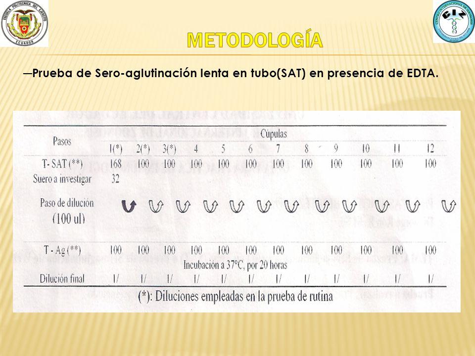 METODOLOGÍA Prueba de Sero-aglutinación lenta en tubo(SAT) en presencia de EDTA.