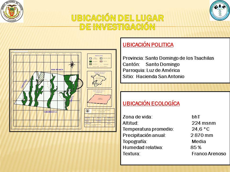 UBICACIÓN DEL LUGAR DE INVESTIGACIÓN
