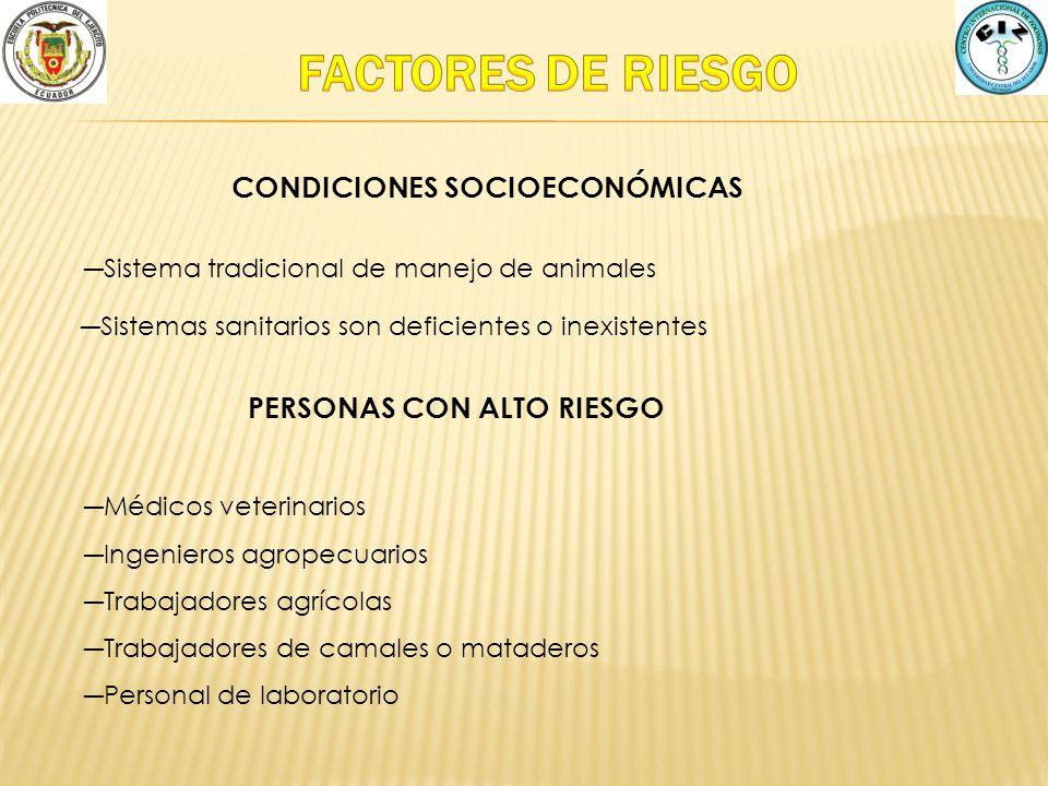 FACTORES DE RIESGO CONDICIONES SOCIOECONÓMICAS
