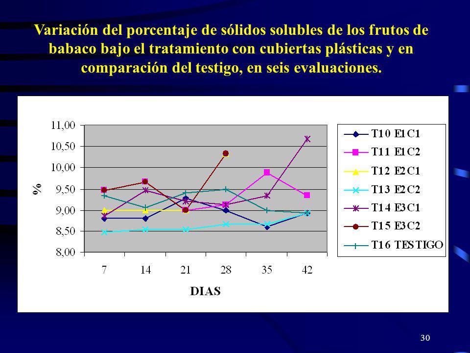 Variación del porcentaje de sólidos solubles de los frutos de babaco bajo el tratamiento con cubiertas plásticas y en comparación del testigo, en seis evaluaciones.