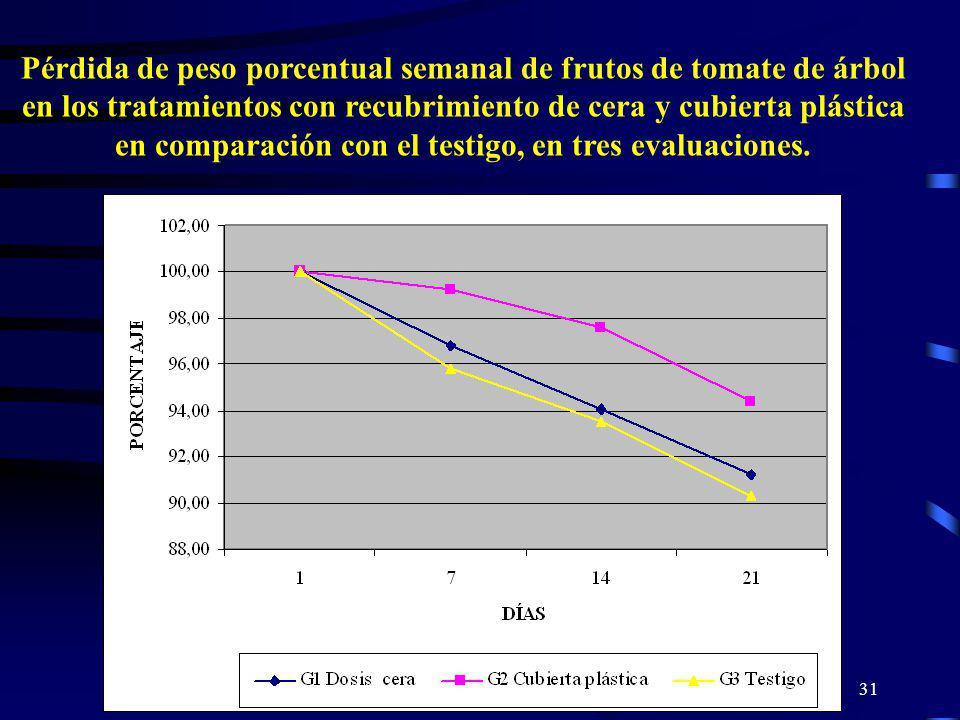 Pérdida de peso porcentual semanal de frutos de tomate de árbol en los tratamientos con recubrimiento de cera y cubierta plástica en comparación con el testigo, en tres evaluaciones.