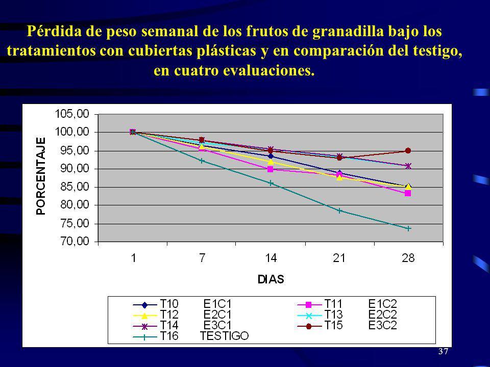 Pérdida de peso semanal de los frutos de granadilla bajo los tratamientos con cubiertas plásticas y en comparación del testigo, en cuatro evaluaciones.