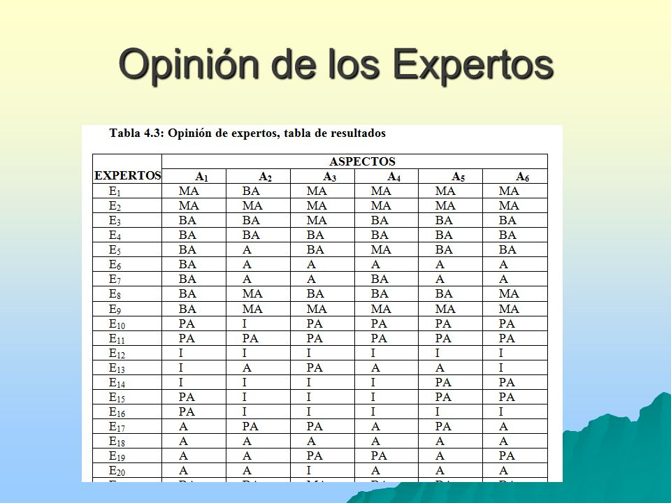 Opinión de los Expertos