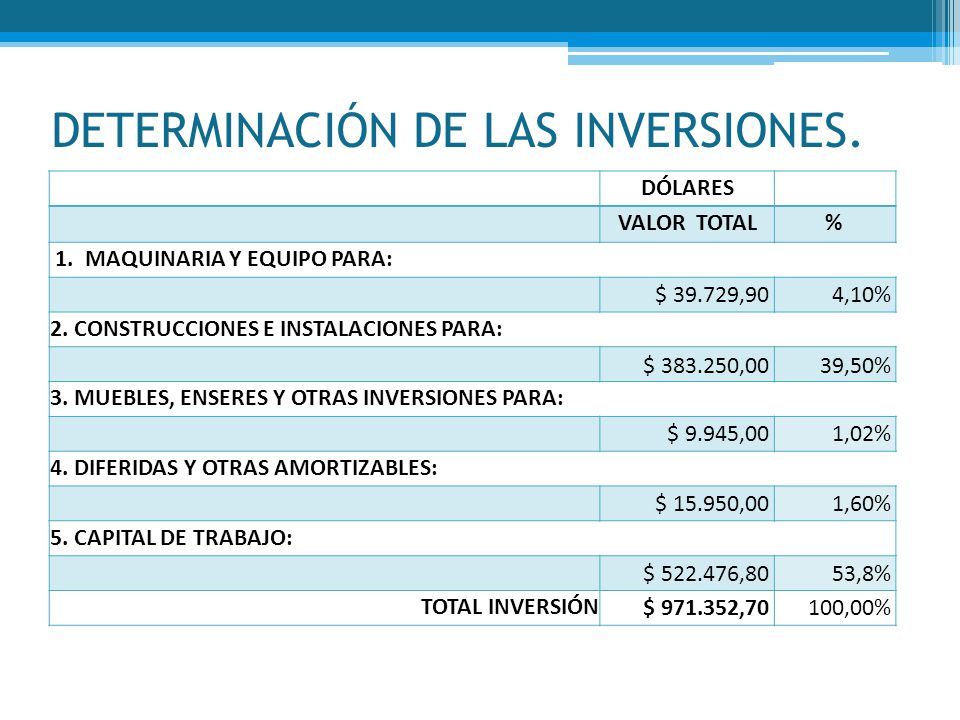 DETERMINACIÓN DE LAS INVERSIONES.