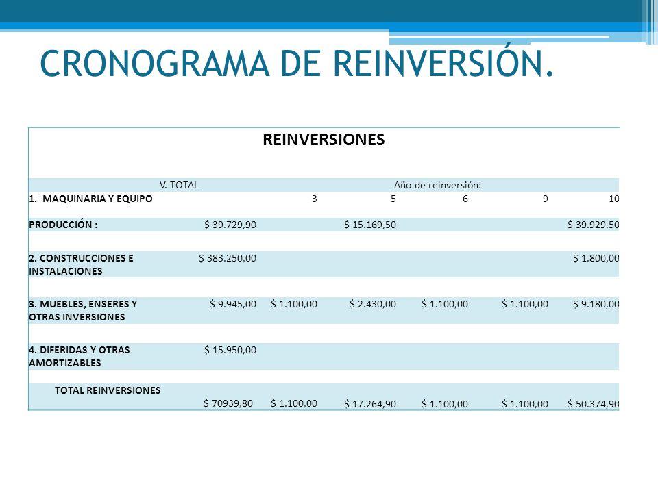 CRONOGRAMA DE REINVERSIÓN.