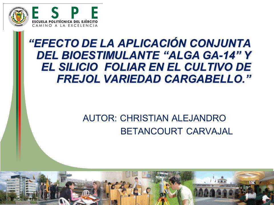 Efecto de LA aplicación CONJUNTA DEL BIOESTIMULANTE ALGA gA-14 Y EL SILICIO FOLIAR EN EL CULTIVO DE FREJOL VARIEDAD CARGABELLO.