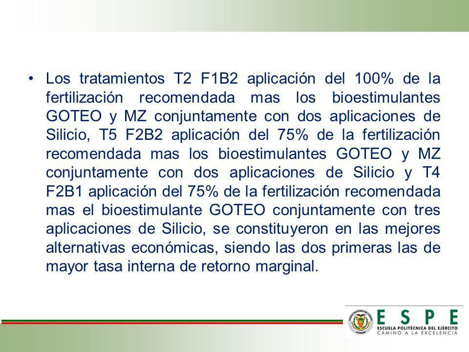 Los tratamientos T2 F1B2 aplicación del 100% de la fertilización recomendada mas los bioestimulantes GOTEO y MZ conjuntamente con dos aplicaciones de Silicio, T5 F2B2 aplicación del 75% de la fertilización recomendada mas los bioestimulantes GOTEO y MZ conjuntamente con dos aplicaciones de Silicio y T4 F2B1 aplicación del 75% de la fertilización recomendada mas el bioestimulante GOTEO conjuntamente con tres aplicaciones de Silicio, se constituyeron en las mejores alternativas económicas, siendo las dos primeras las de mayor tasa interna de retorno marginal.