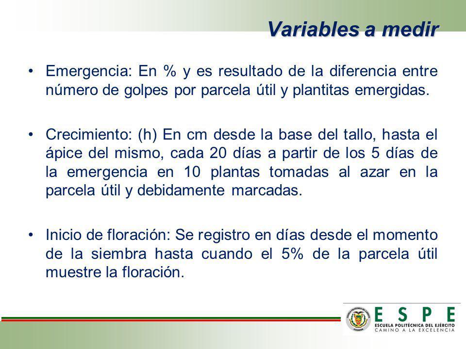 Variables a medir Emergencia: En % y es resultado de la diferencia entre número de golpes por parcela útil y plantitas emergidas.