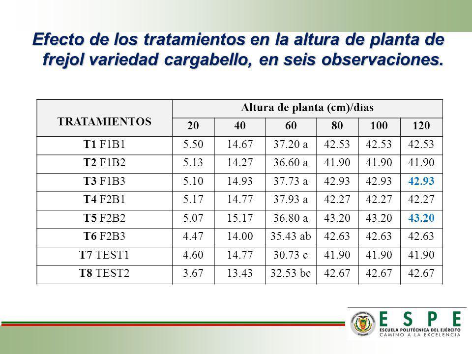 Altura de planta (cm)/días