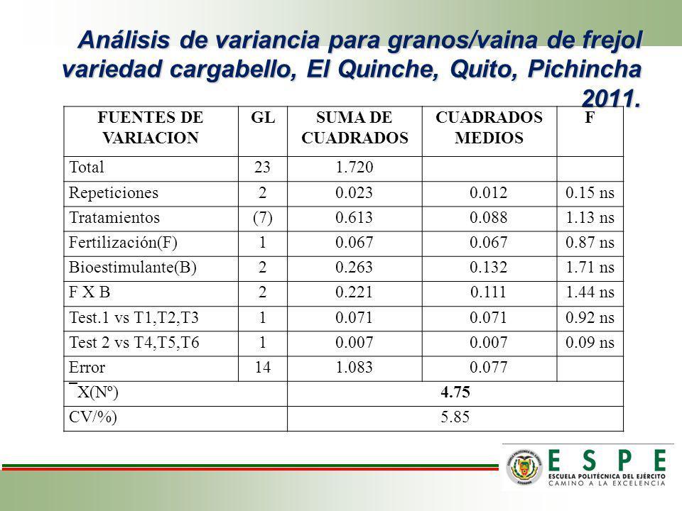 Análisis de variancia para granos/vaina de frejol variedad cargabello, El Quinche, Quito, Pichincha 2011.