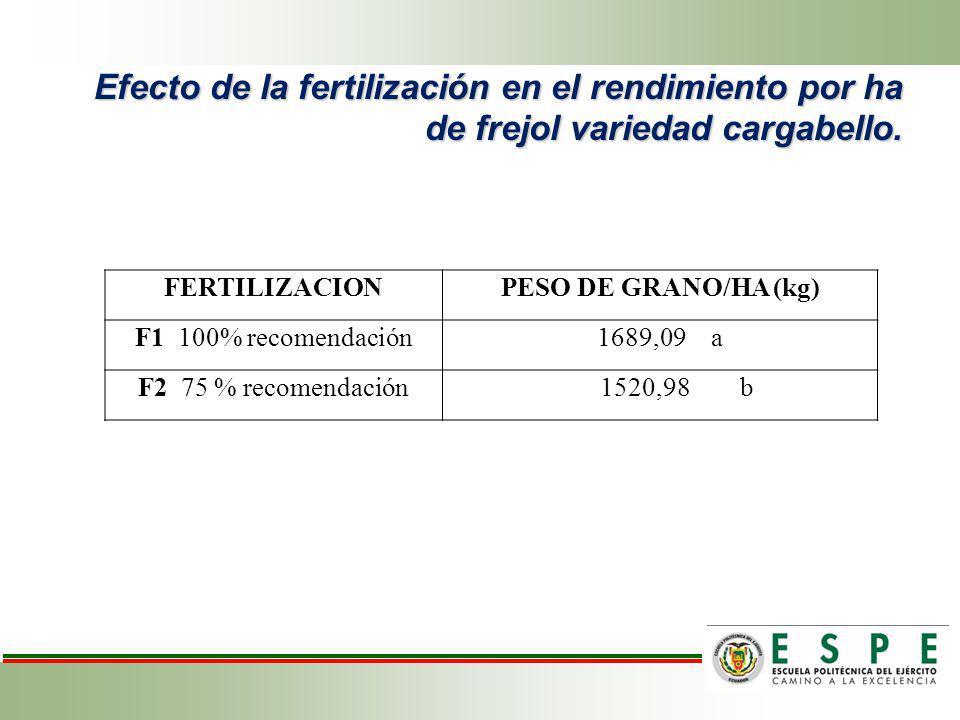 Efecto de la fertilización en el rendimiento por ha de frejol variedad cargabello.