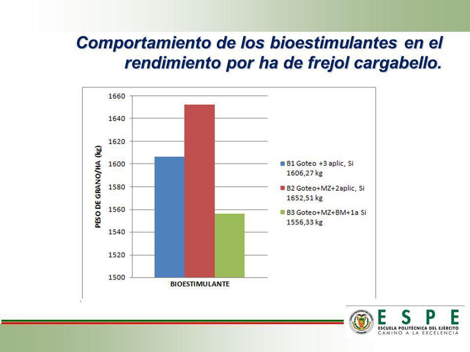 Comportamiento de los bioestimulantes en el rendimiento por ha de frejol cargabello.