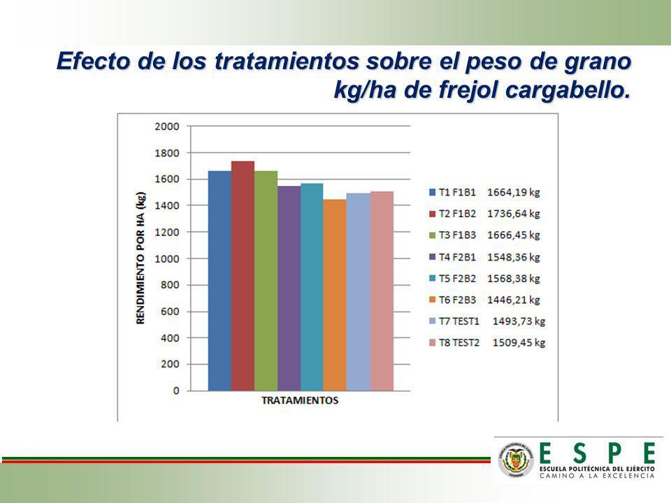Efecto de los tratamientos sobre el peso de grano kg/ha de frejol cargabello.