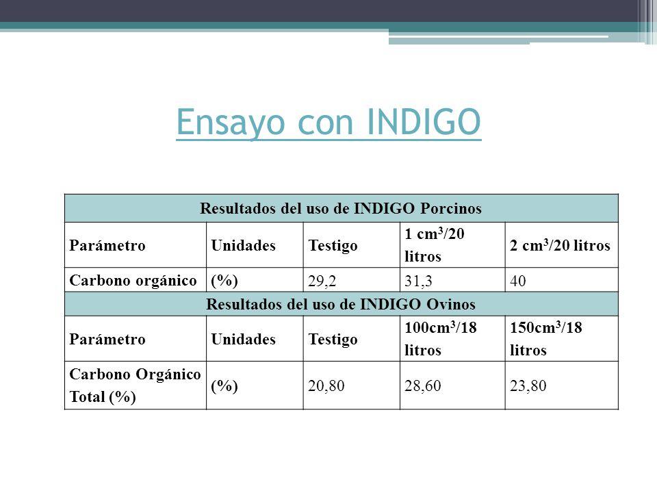 Ensayo con INDIGO Resultados del uso de INDIGO Porcinos Parámetro