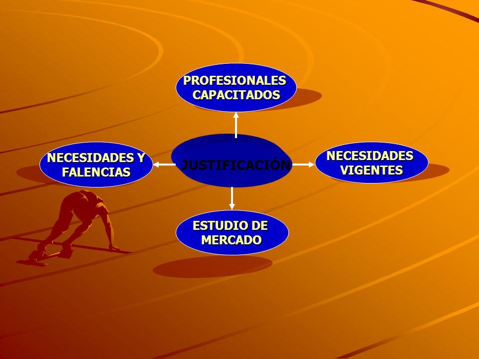 JUSTIFICACIÓN PROFESIONALES CAPACITADOS NECESIDADES Y NECESIDADES