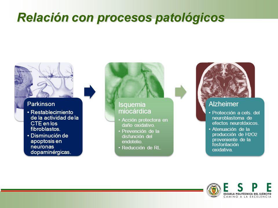 Relación con procesos patológicos