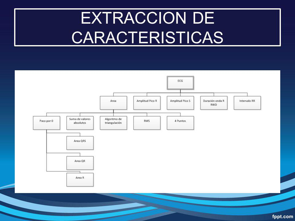 EXTRACCION DE CARACTERISTICAS