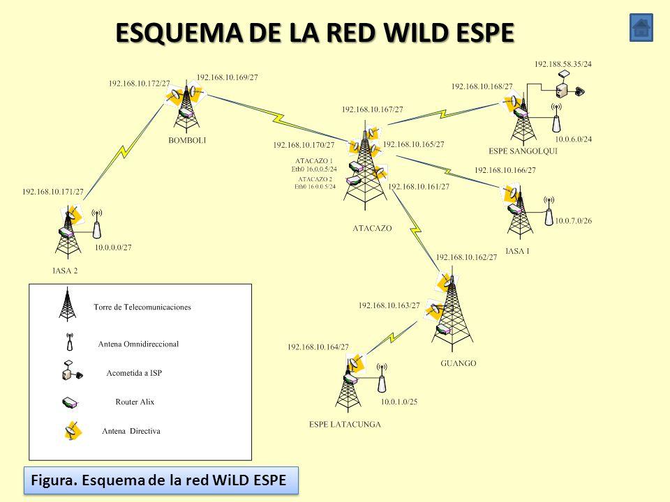 ESQUEMA DE LA RED WILD ESPE
