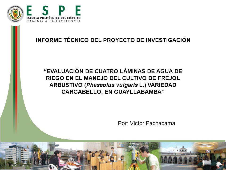 INFORME TÉCNICO DEL PROYECTO DE INVESTIGACIÓN