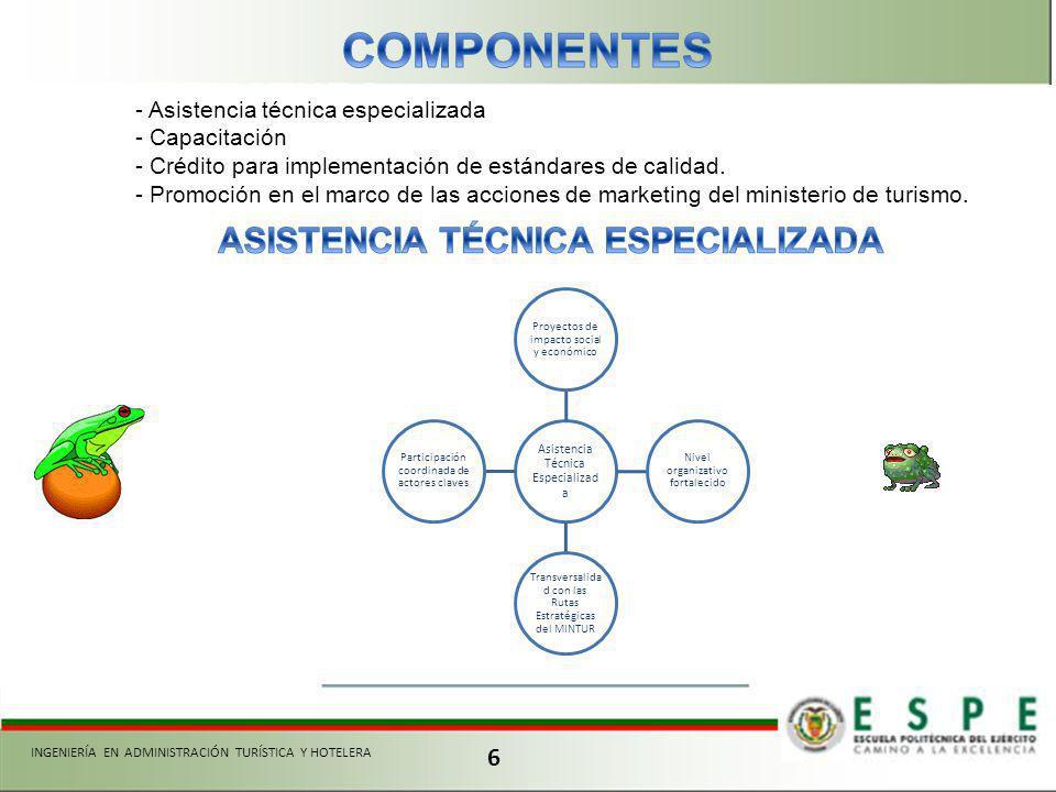 COMPONENTES ASISTENCIA TÉCNICA ESPECIALIZADA 6