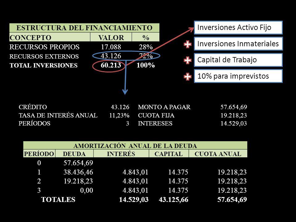 ESTRUCTURA DEL FINANCIAMIENTO AMORTIZACIÓN ANUAL DE LA DEUDA