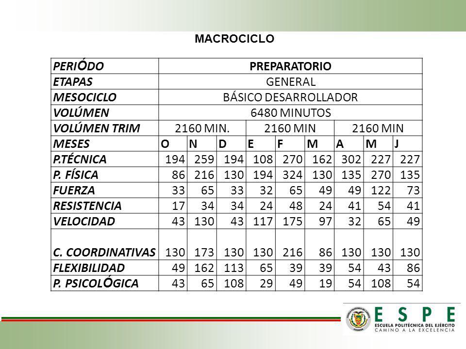 PERIÓDO PREPARATORIO ETAPAS GENERAL MESOCICLO BÁSICO DESARROLLADOR