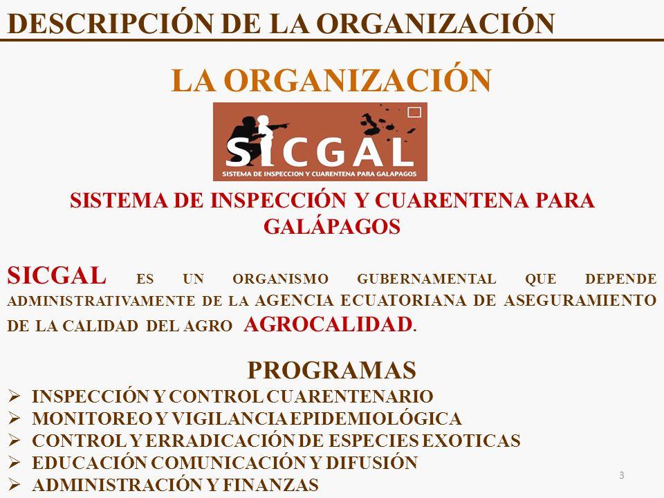 DESCRIPCIÓN DE LA ORGANIZACIÓN