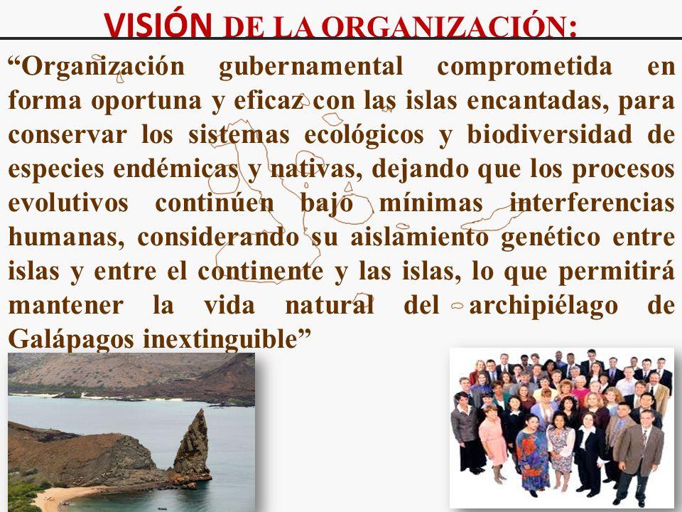 VISIÓN DE LA ORGANIZACIÓN: