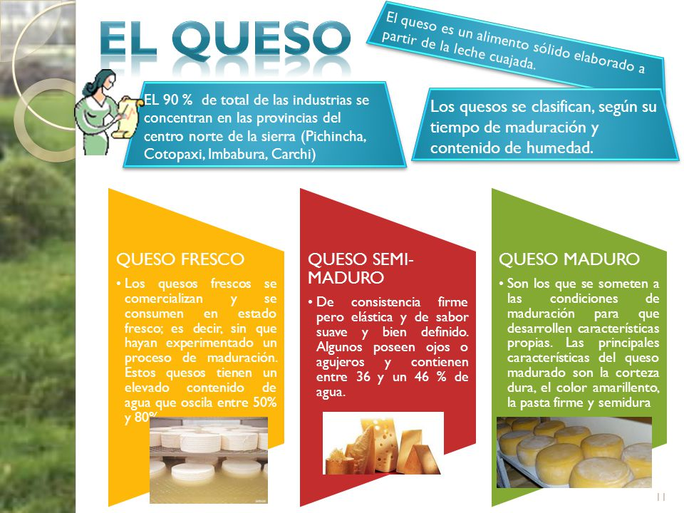 EL QUESO El queso es un alimento sólido elaborado a partir de la leche cuajada.
