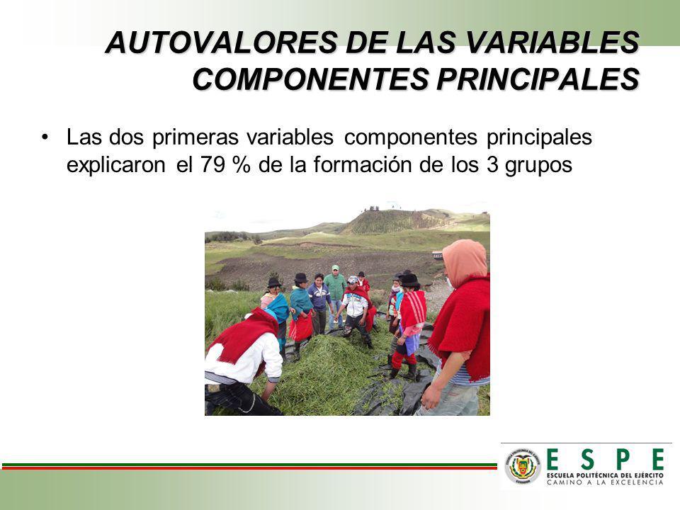 AUTOVALORES DE LAS VARIABLES COMPONENTES PRINCIPALES