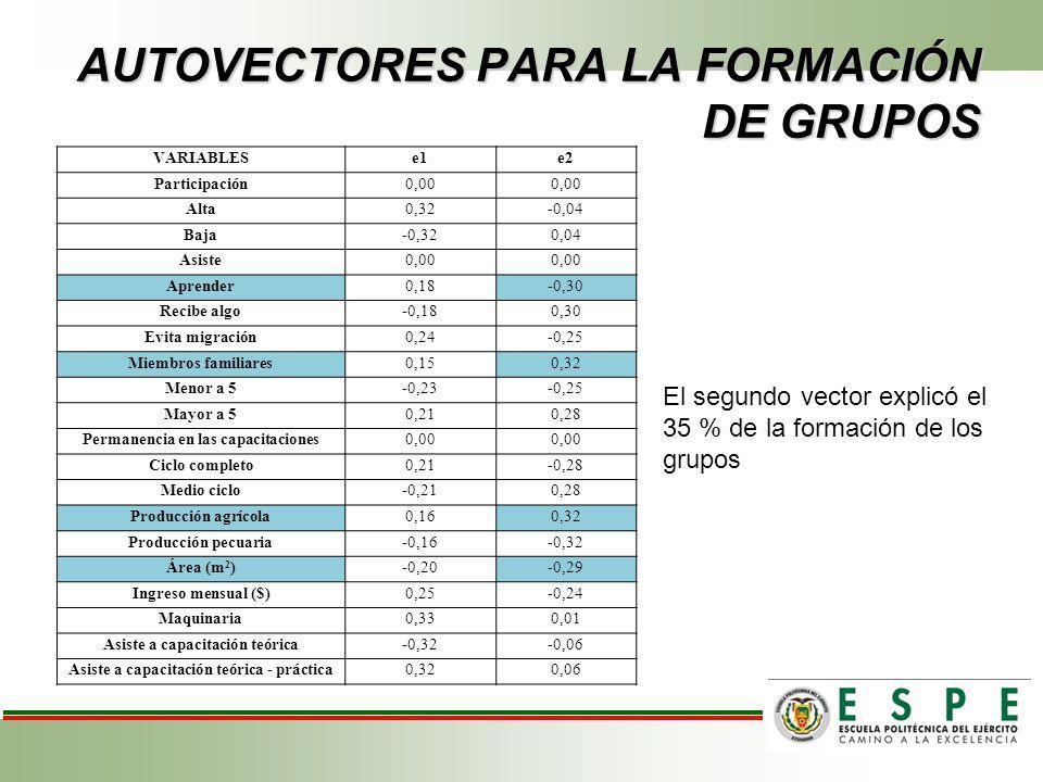 AUTOVECTORES PARA LA FORMACIÓN DE GRUPOS