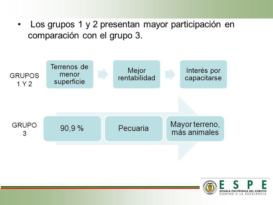 Los grupos 1 y 2 presentan mayor participación en comparación con el grupo 3.