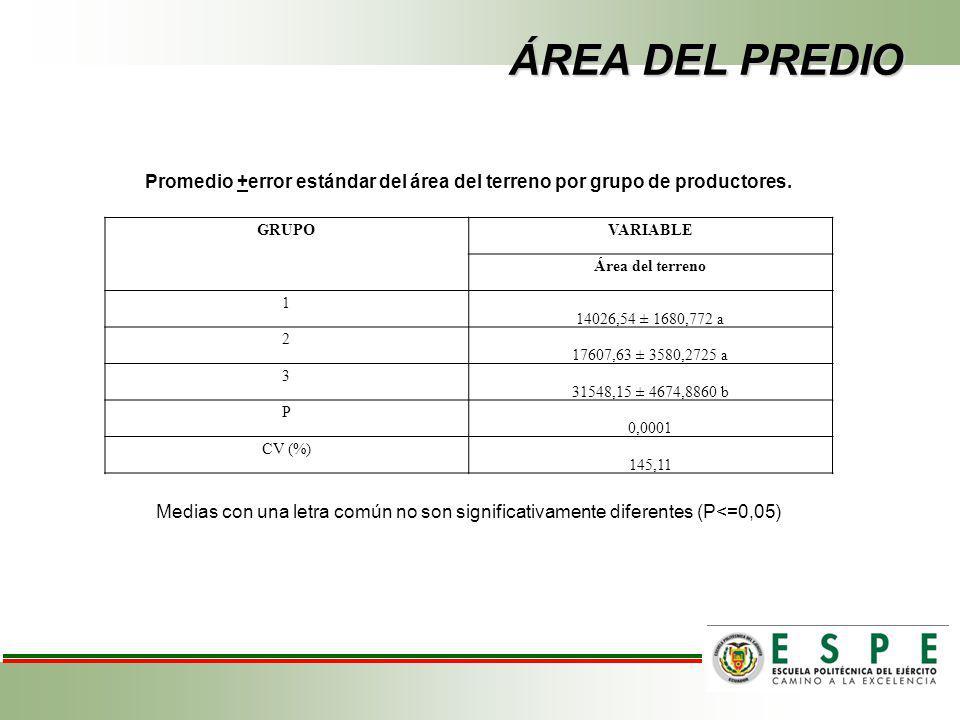 ÁREA DEL PREDIO Promedio +error estándar del área del terreno por grupo de productores. GRUPO. VARIABLE.