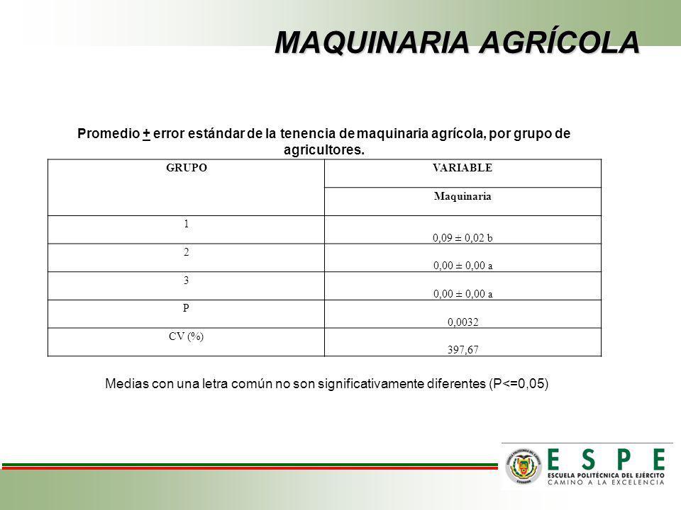 MAQUINARIA AGRÍCOLA Promedio + error estándar de la tenencia de maquinaria agrícola, por grupo de agricultores.