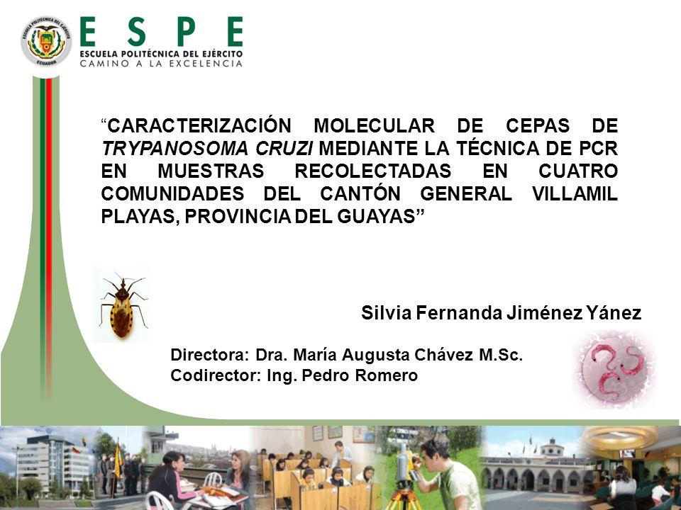 Silvia Fernanda Jiménez Yánez