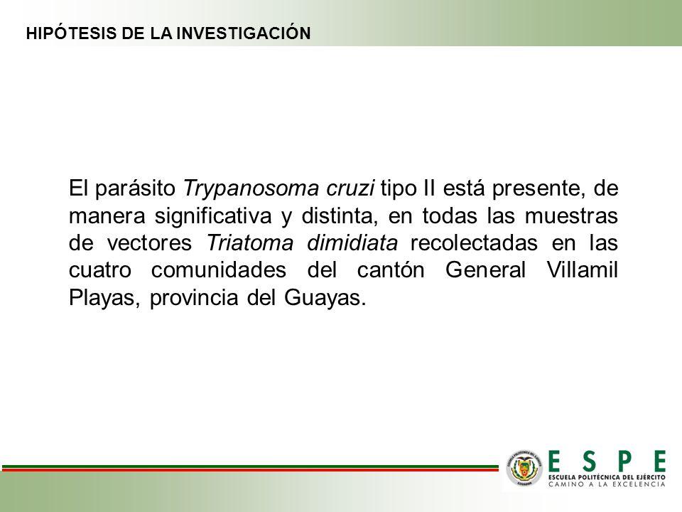 HIPÓTESIS DE LA INVESTIGACIÓN