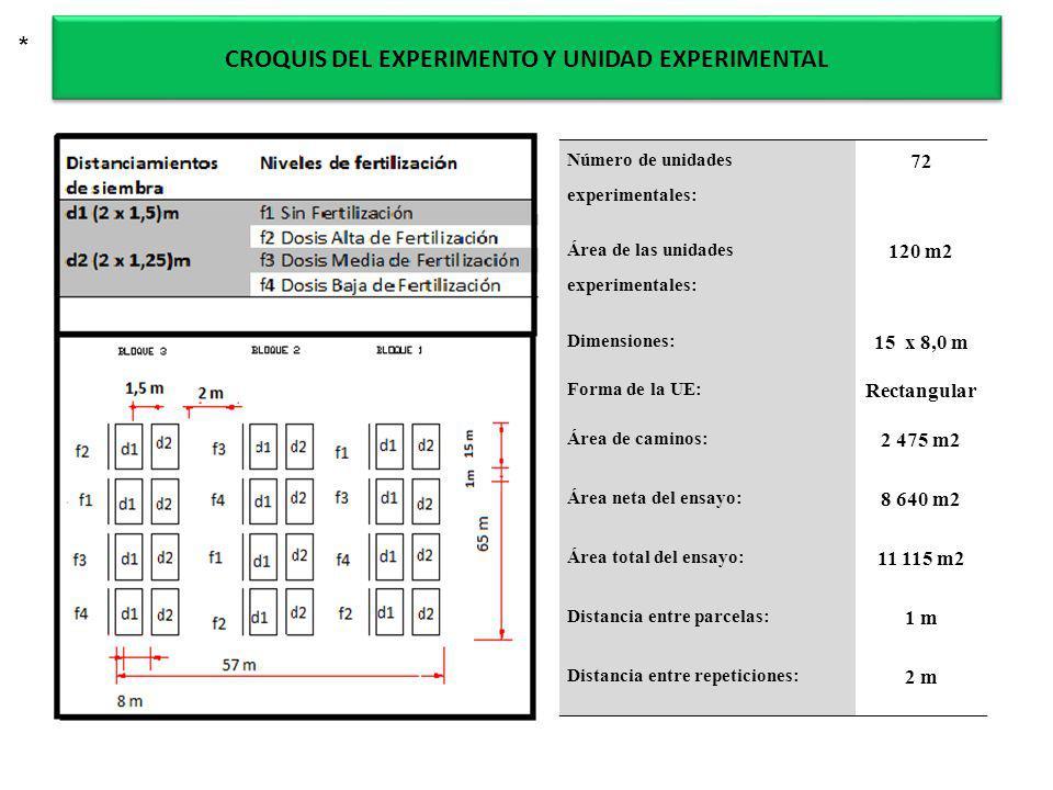 CROQUIS DEL EXPERIMENTO Y UNIDAD EXPERIMENTAL