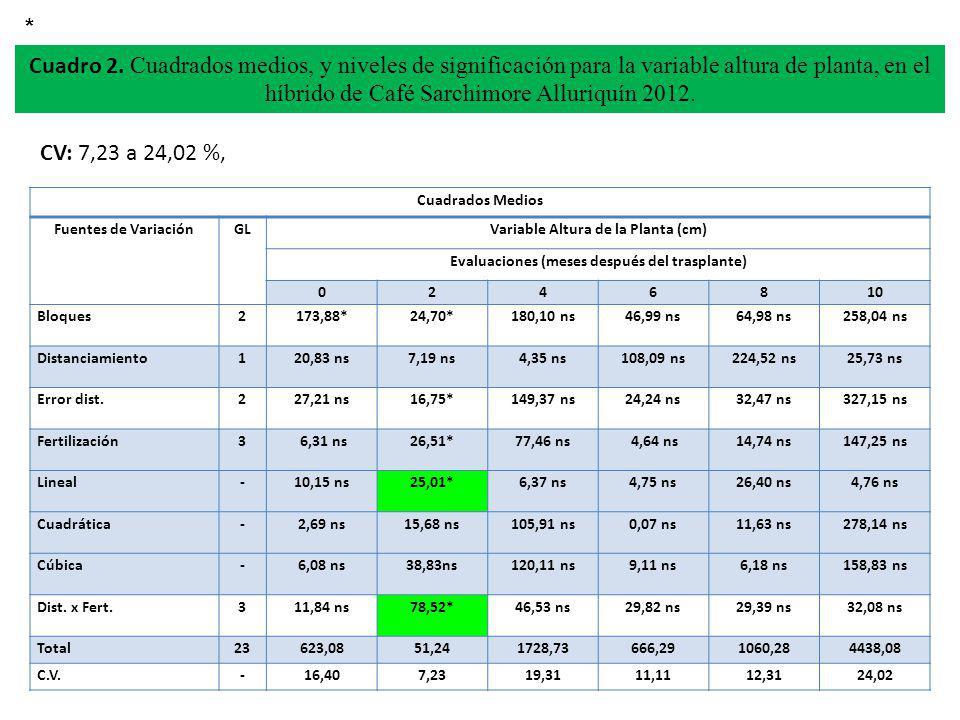 * Cuadro 2. Cuadrados medios, y niveles de significación para la variable altura de planta, en el híbrido de Café Sarchimore Alluriquín 2012.