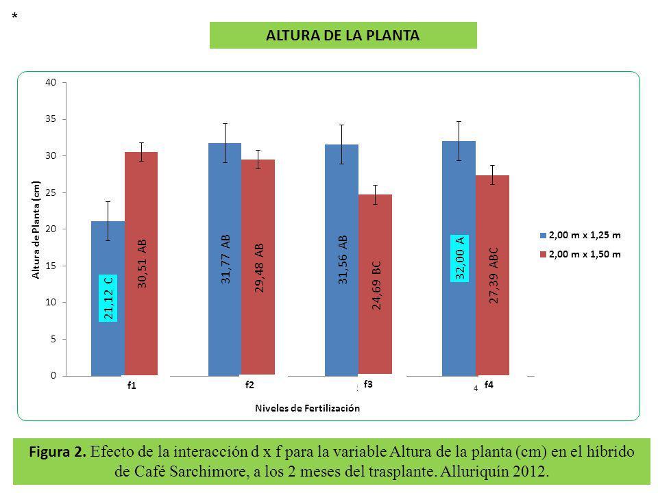 * ALTURA DE LA PLANTA. f1. f2. f3. f4.